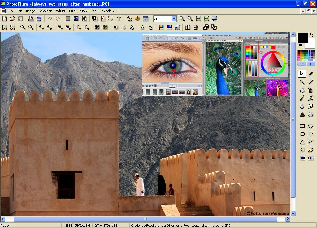 Vector Magic: Convert JPG, PNG images to SVG, EPS, AI vectors